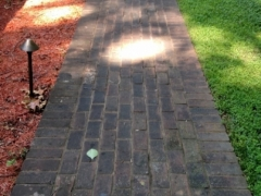 brick walkway, before cleaning