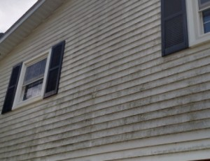before photo vinyl siding soft wash power washing in Ellicott City MD 21043
