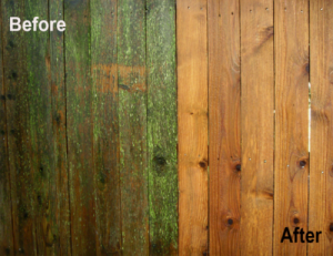 before and after photo wood fence power wash pressure washing in Manchester MD 21102